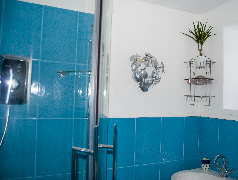 Photo of part of the shower-room in Mid Thornliebank